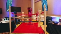 KO Punching Bag Arcade Game Rental For Parties, Trade Shows, Or Corporate Events. Corporate Event Rentals,