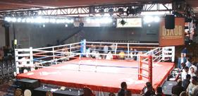 Full Size Boxing Ring Rentals: Orlando, Tampa, Jacksonville, Miami