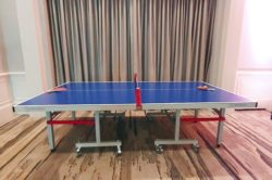 Table Tennis rental at an event in Orlando Florida for the Florida Citrus Sports events.