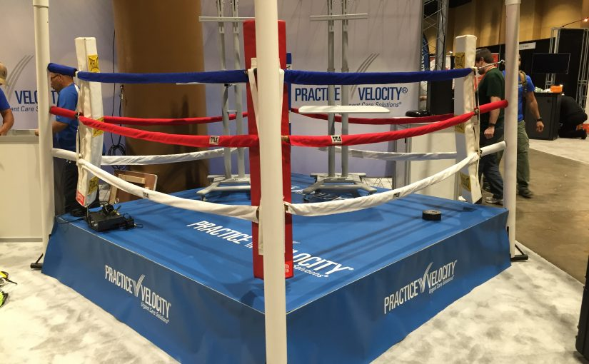 Mini Boxing Ring Rental